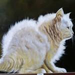 De Eland Axel Krehler doek witte poes Eline's kunstblog